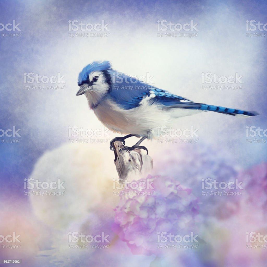 Blue jay in Flower garden stock photo