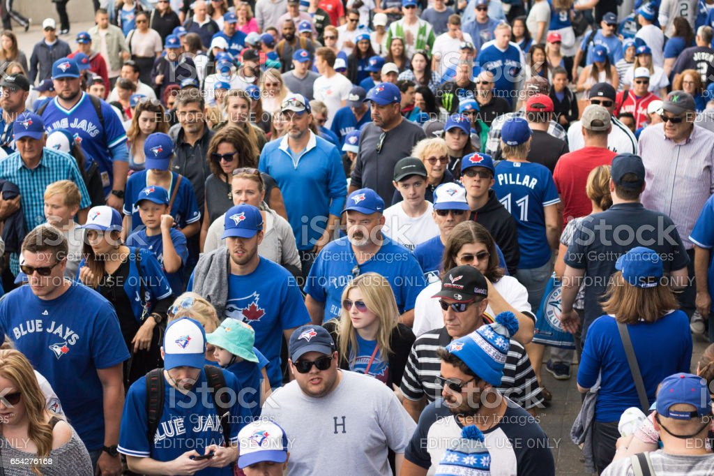 Blue Jays fans after Toronto win stock photo
