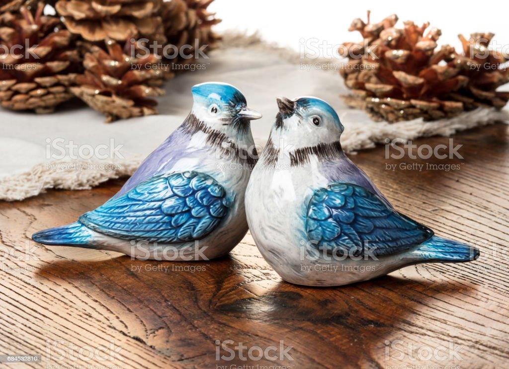 Blue jays stock photo