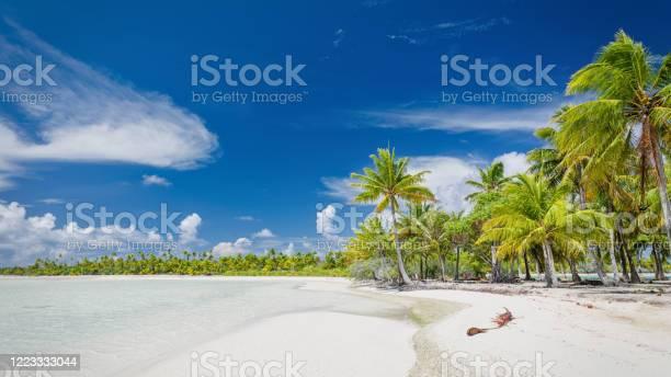 Blue Lagoon Fakarava Atoll Teahatea Beach Panorama French Polynesia Stock Photo - Download Image Now