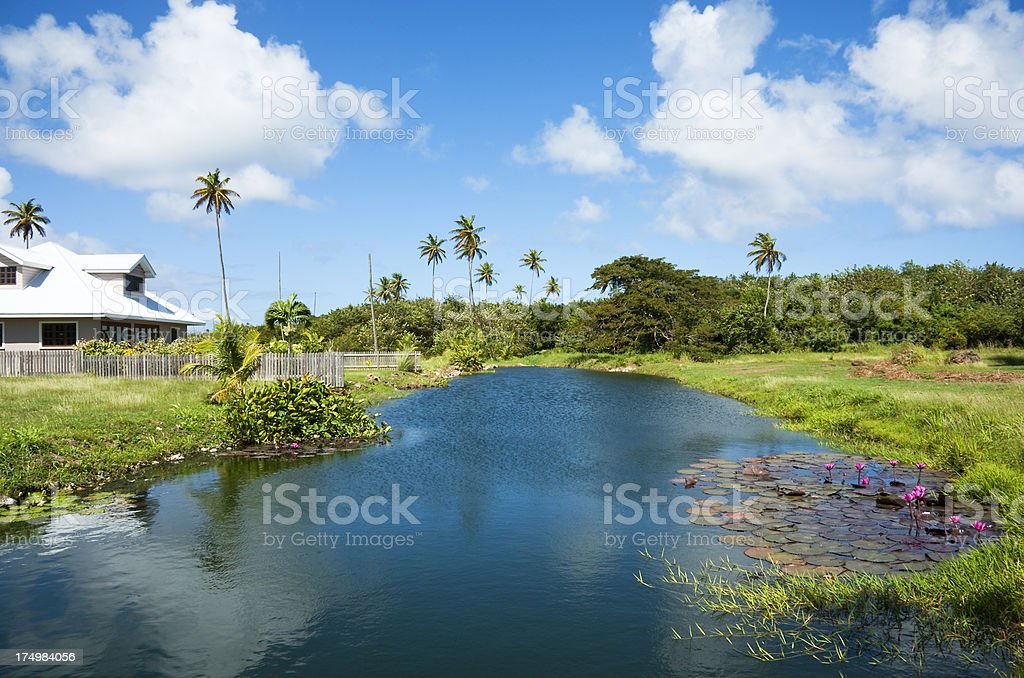 Blue Lagoon Tobago stock photo