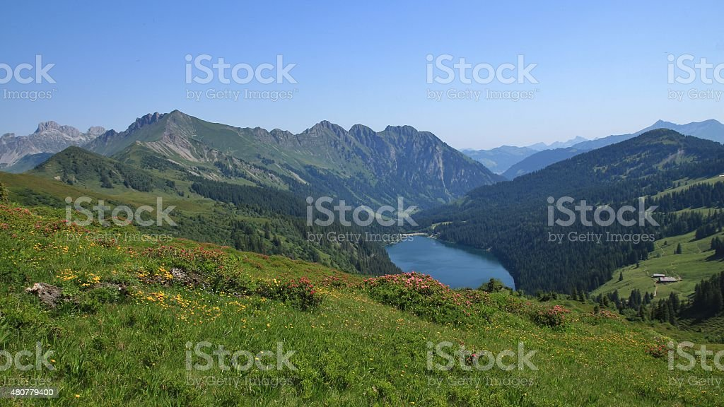 Blue lake Arnensee and green meadows stock photo