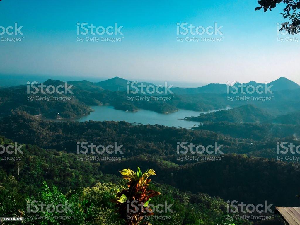 Lac Blue - Photo de Arbre libre de droits