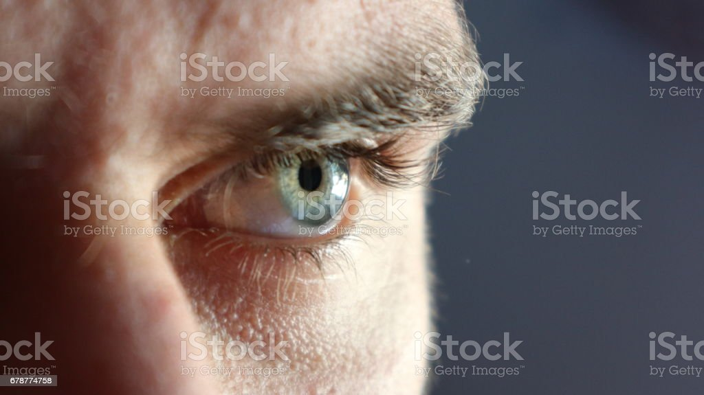 Blue Male Eye royalty-free stock photo