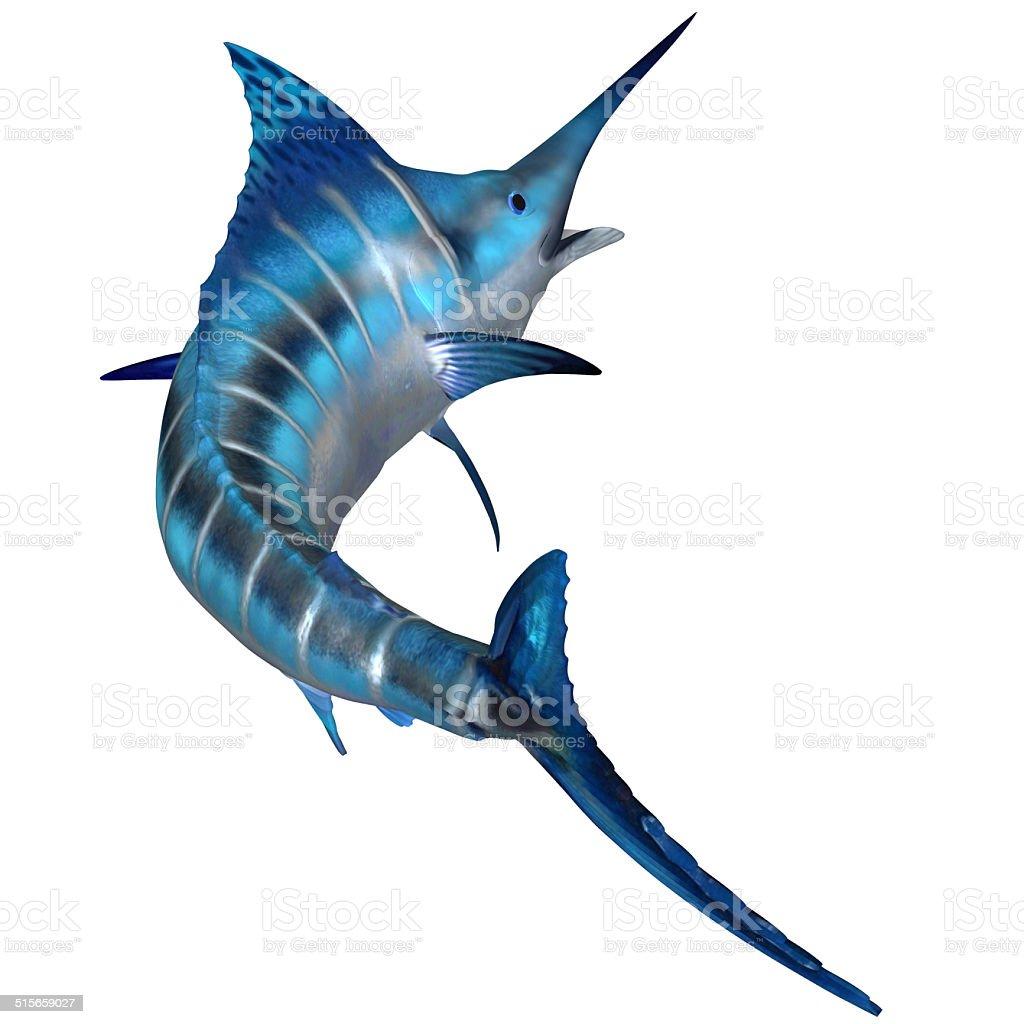 Blue Marlin Predator stock photo