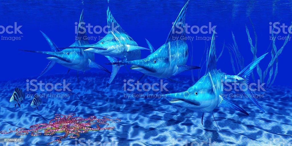 Blue Marlin Predators stock photo