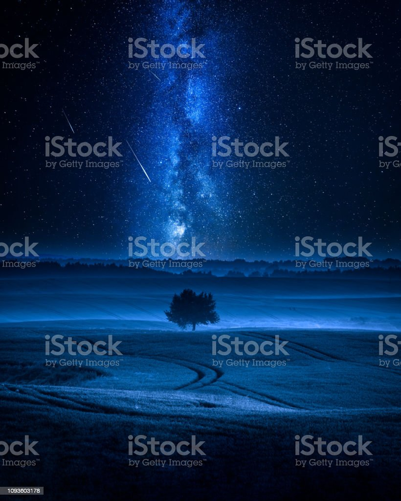 Blue milky way and falling stars over one tree
