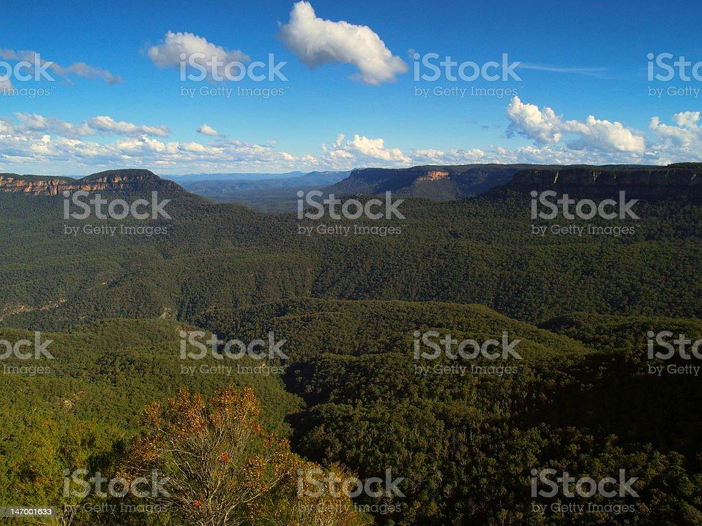 Blue mountains, Australia royalty-free stock photo