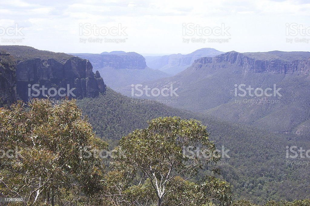 Blue Mountains valley royalty-free stock photo
