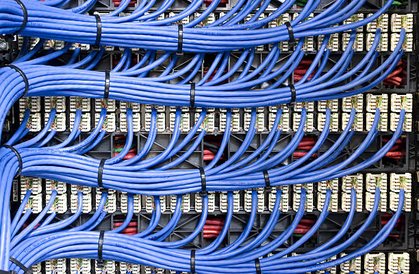 blue network cables - kabel stockfoto's en -beelden