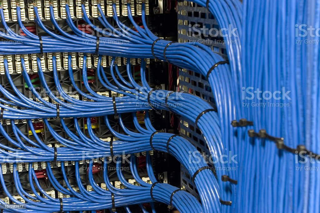 Blue Network Cables stock photo