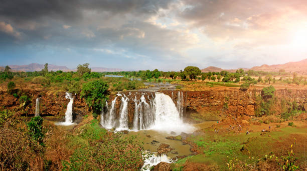 blue nile waterfalls - horn of africa stock photos and pictures