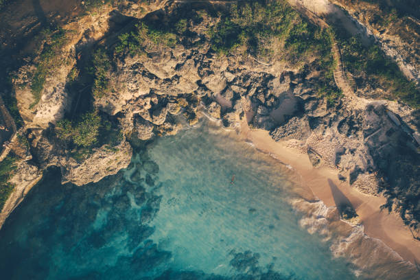 Blue ocean and cliffs covered with trees and grass. Bali shores from above. Aerial drone shot. stock photo