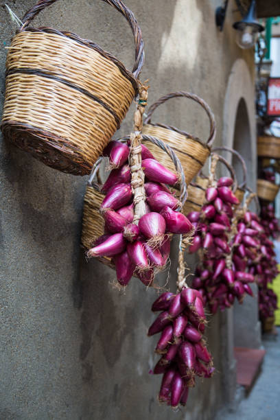 blue onions hanging on the house ,in the old town of tropea - foto di tropea foto e immagini stock