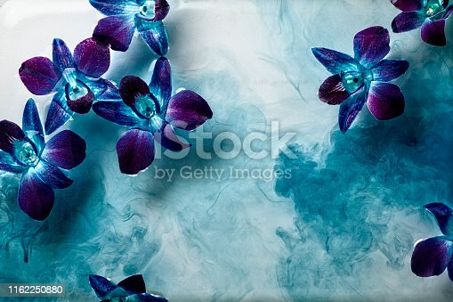 This is an artistic photo of blue and purple orchids floating in a mixture of clear an blue water