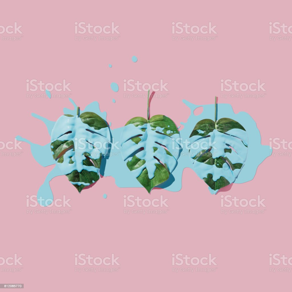 Blue paint splatter over tropical leaves on pink pastel background. flat lay. Minimal concept. stock photo