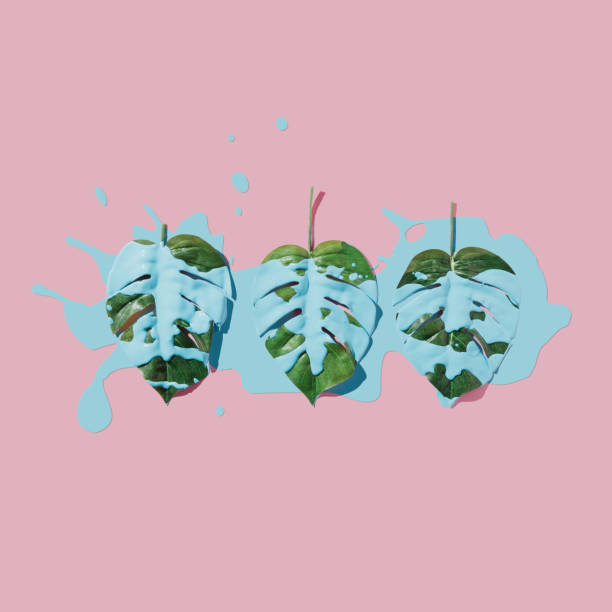 Blue paint splatter over tropical leaves on pink pastel background. flat lay. Minimal concept. - foto stock