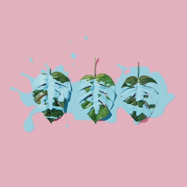 Éclaboussures de peinture bleue sur les feuilles tropicales sur fond pastel rose. lay plat. Concept de minime. - Photo