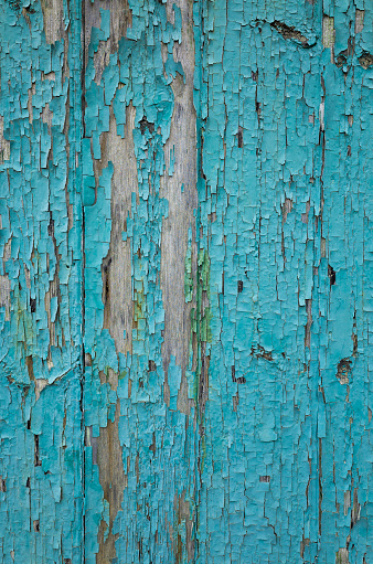 An old weathered painted door in a blue colour