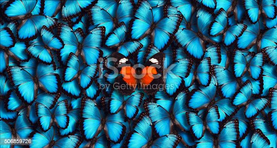 istock Blue Panoramic Butterfly Background 506859726