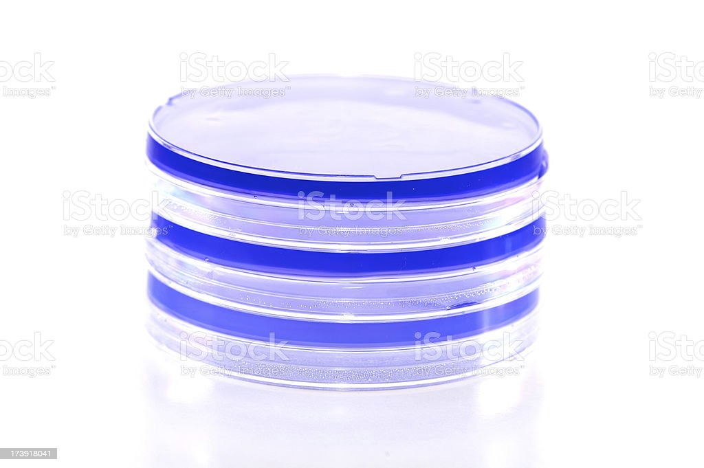 Blue Petri Dishes / Plates royalty-free stock photo