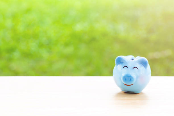 blue piggy bank on wooden table over blurred garden bokeh background. saving,money concept. stock photo