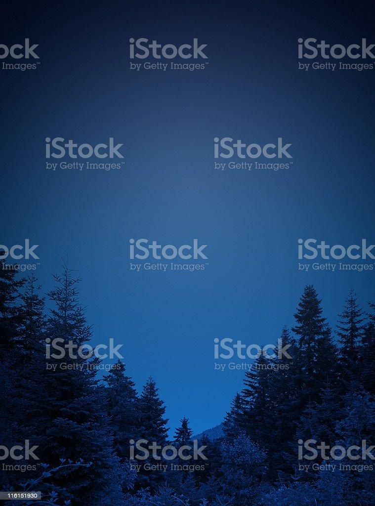 Blue pine frame royalty-free stock photo