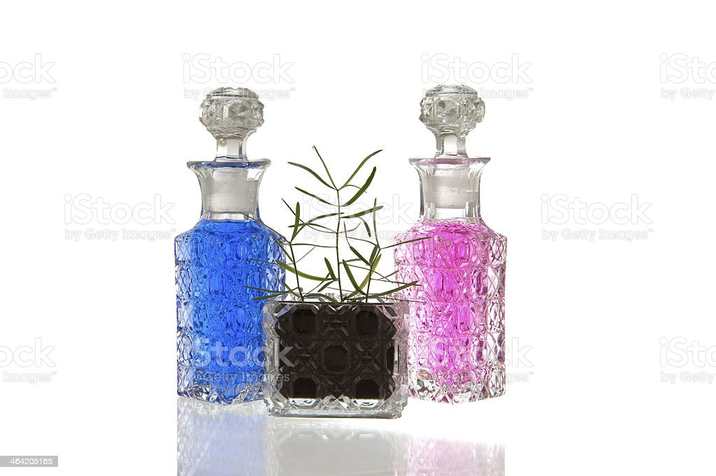 Blue pink glass bottles plant royalty-free stock photo
