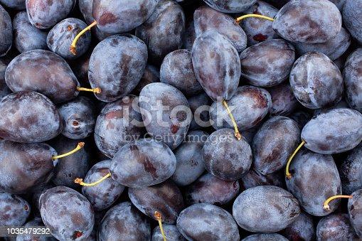 blue plum background texture
