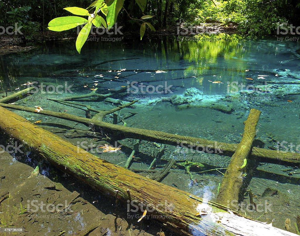 blue pool stock photo