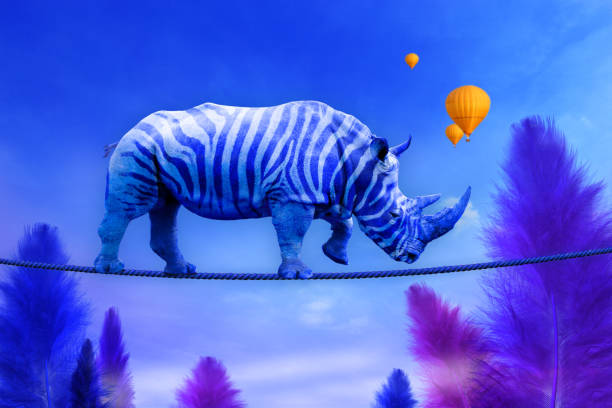 Blue rhino with zebra lines walking on a rope Blue rhino with zebra lines walking on a rope over blue feather trees background surreal stock pictures, royalty-free photos & images