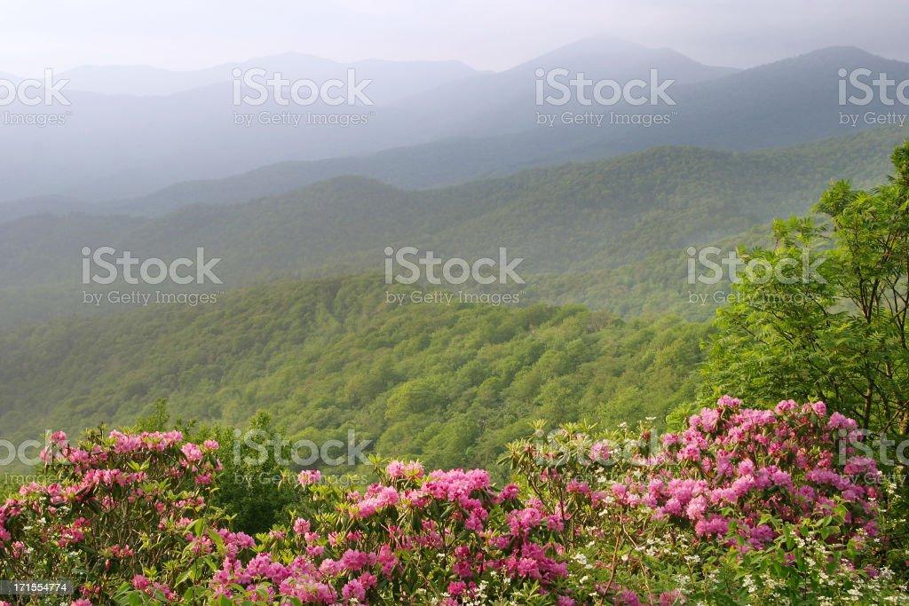 Blue Ridge Mountain royalty-free stock photo