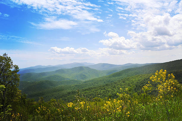 Blue Ridge Mountains, Appalachians, Virginia Scenery fron Skyline drive, Virginia, USA appalachia stock pictures, royalty-free photos & images
