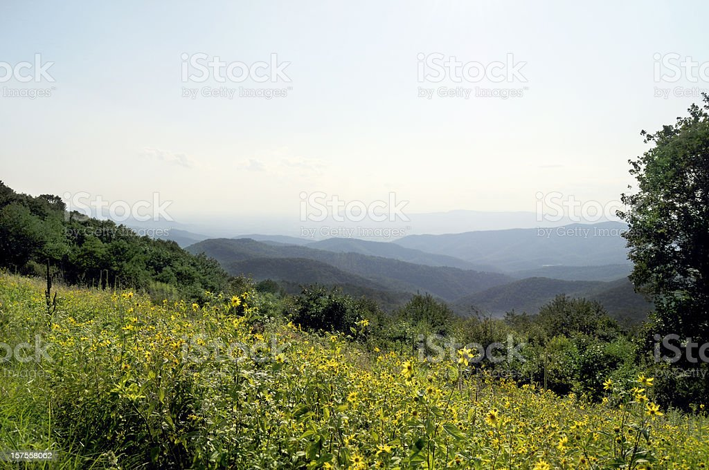 Blue Ridge Mountains, Appalachians, Virginia royalty-free stock photo