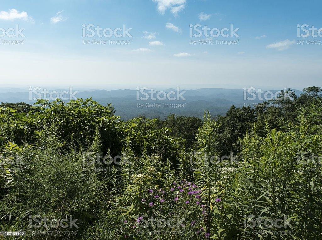Blue Ridge mountains in summer royalty-free stock photo