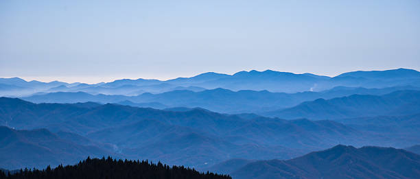 Blue Ridge Mountains The Blue Ridge Mountains, viewed from Clingmans Dome in the Great Smoky Mountains National Park, near Gatlinburg, Tennessee. A ridge of pine tress in the foreground. blue ridge mountains stock pictures, royalty-free photos & images
