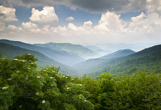 Las montañas Blue Ridge Parkway pintoresco paisaje de verano de la vista de Asheville, Carolina del Norte - foto de stock