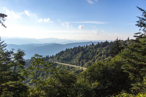 blue ridge parkway winden door de bergen van north carolina - zuidoost stockfoto's en -beelden