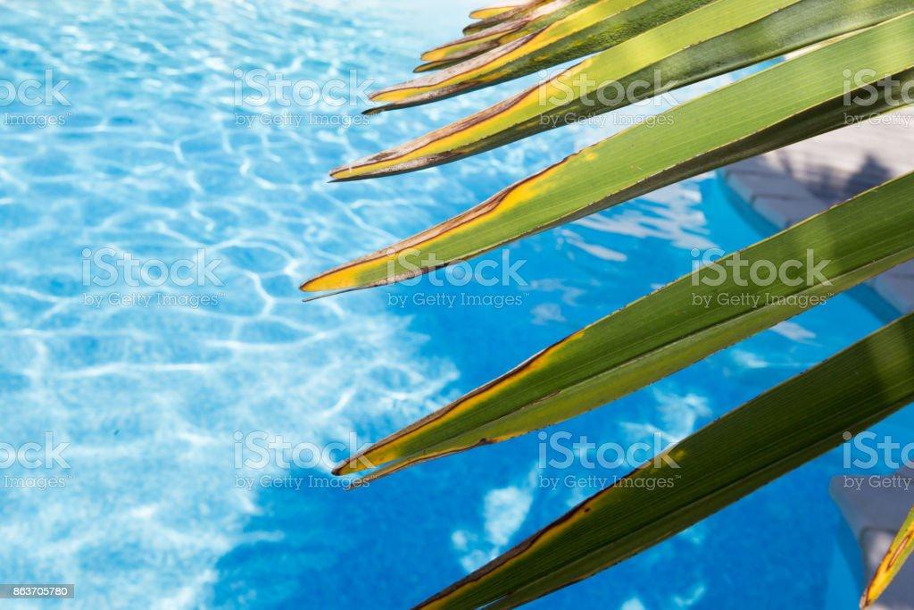 430dd73df8c10f Blauwe Geripte Water In Zwembad Stockfoto en meer beelden van ...