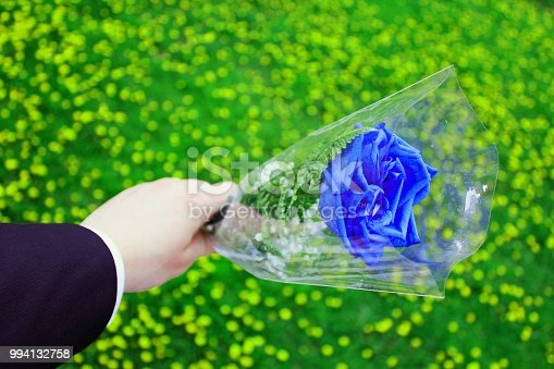 Blue rose held over a garden of yellow flowers by a man in a suit.