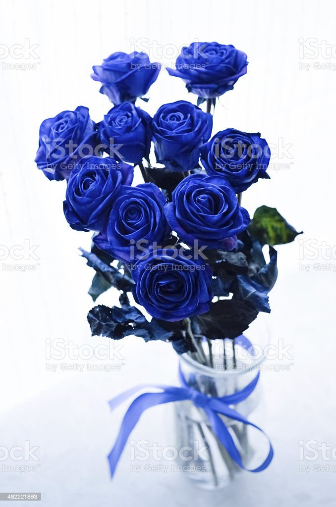 Blue roses in the vase stock photo