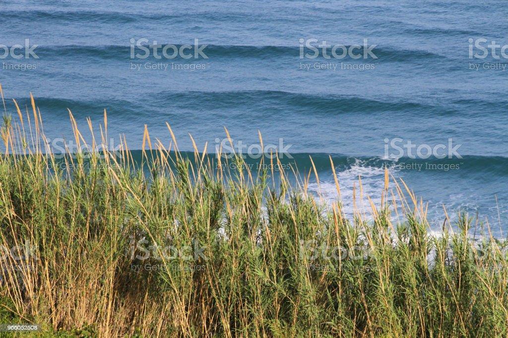 Blaues Meereswellen des Tyrrhenischen Meeres - Lizenzfrei Bucht Stock-Foto