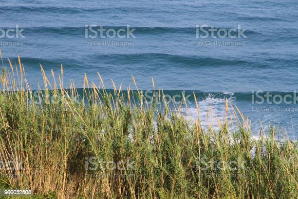 Blå Havet Vågor Av Tyrrenska Havet-foton och fler bilder på Europa