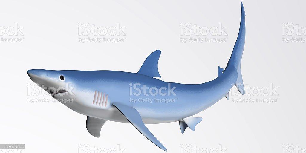 Blue Shark Profile stock photo