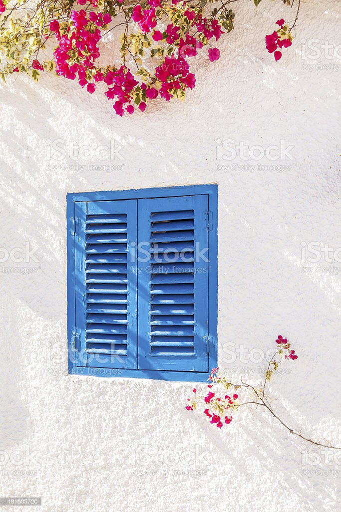 Blue Shuttered Window with Bougainvillea royalty-free stock photo