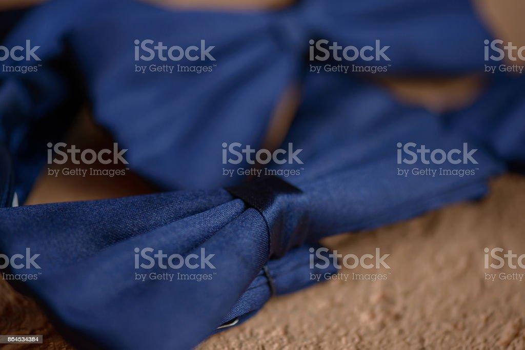 Azules, seda pajaritas con enfoque selectivo colocado sobre una superficie suave y beige - foto de stock
