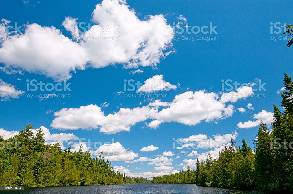 Blue skies and Clouds in the North Woods stock photo