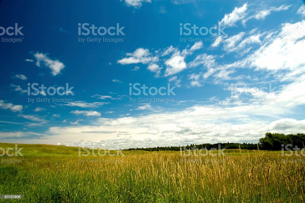 Blue Skies over the Midwest royalty-free stock photo