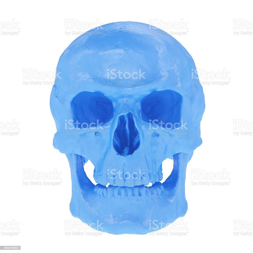 Blue Skull stock photo