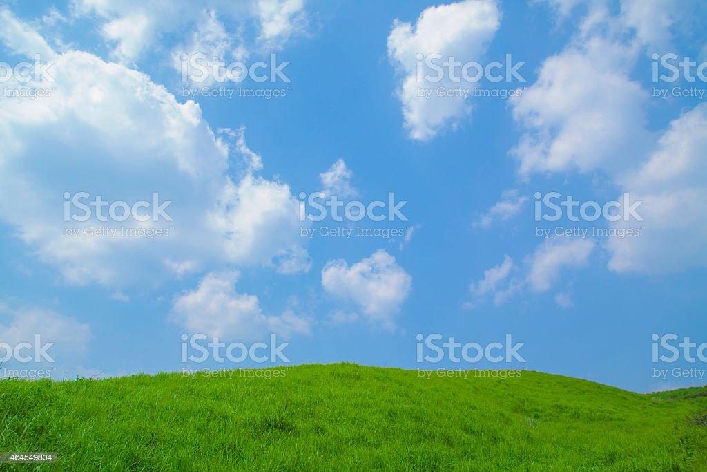Blue sky and grassland stock photo